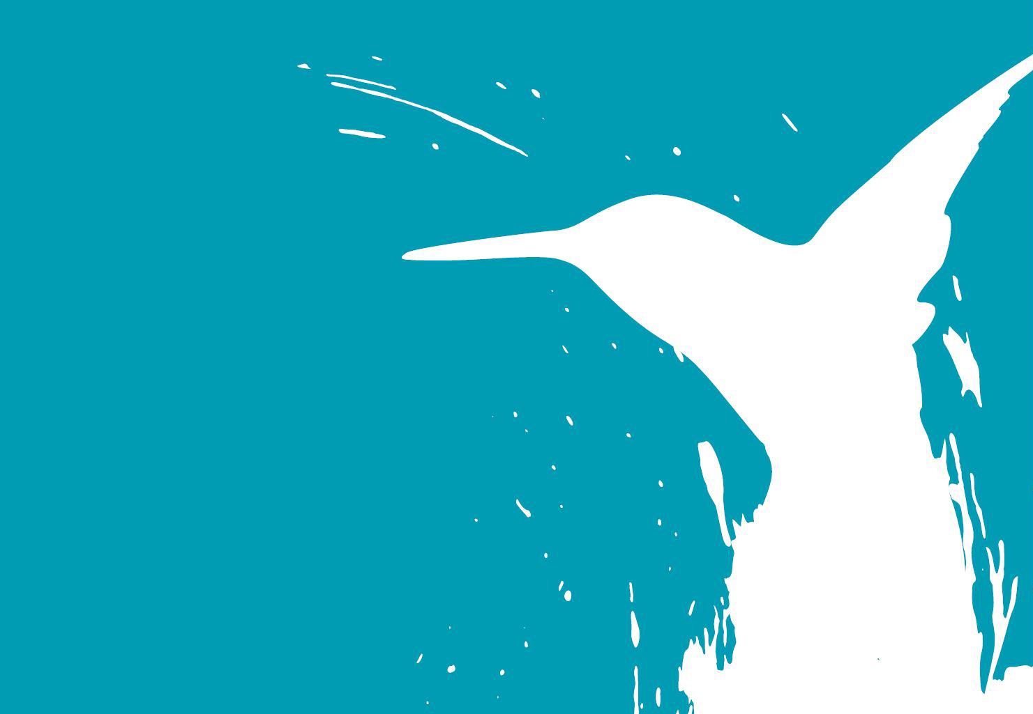Anzeige Kunstschule Colibri